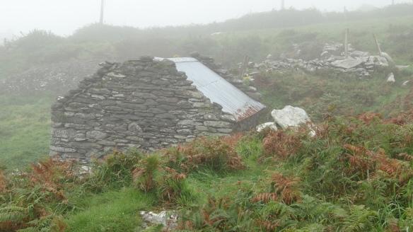 IRLANDA 2012(2) 224